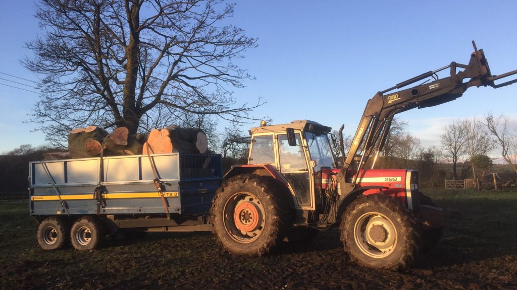 cms-tree-services-large-tree-removal-trunks-machinery