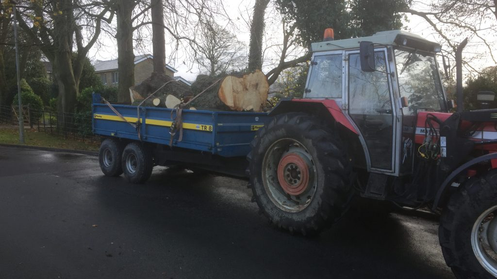 cms-tree-services-tree-removal-machinery